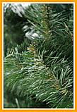 ЕЛЬ искусственная ПВХ 2,2 м Искусственная ЕЛКА новогодняя СКАЗКА 2.2 метра Ялинка новорічна 220см, фото 3