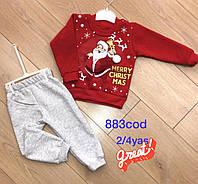 Дитячі костюми тепленькі для дівчаток 20114
