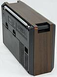FM-Радиоприемник Golon RX-99UAR, MP3 проигрыватель, SD, USB поддержка, фото 2