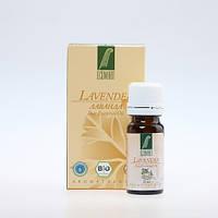 Эфирное масло Лаванды 100%