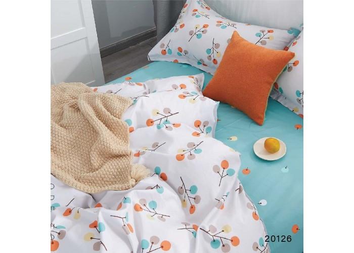 Комплект постельного белья Евро Вилюта Ранфорс 20126
