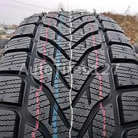 Зимние шины 225/65 R17 106H Lassa Competus Winter 2 XL (2020, Турция)