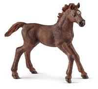 Фигурка Schleich Английский чистокровный жеребенок 13857, КОД: 2429371