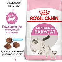 Сухий корм Royal Canin Mother and Babycat для кішки в період вагітності і лактації Упаковка 400г
