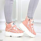 Мега крутые розовые женские спортивные ботинки на молнии на липучке 38-24см, фото 10