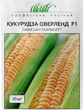Оверленд F1 20 шт семена кукурузы Syngenta Голландия