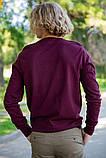 Свитер мужской 117R008(1100) цвет Сливовый, фото 4