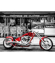 Пазлы Anatolian 1019, Красный мотоцикл, 1000 эл.