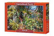 """Пазлы Castorland """"Лесная поляна"""" (C-200764)"""