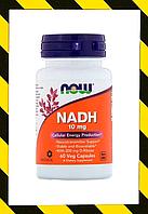 Now Foods, НАДН, никотинамид-адениндинуклеотид) 10 мг,  NADH, 60 раст. капсул