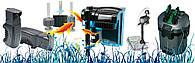 Види акваріумних фільтрів і як за ними доглядати