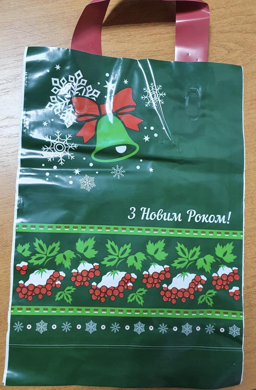 Новогодний пакет с петлевой ручкой 200*290, 10 шт