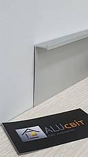Плинтус  алюминиевый скрытого монтажа 70 мм анодированный c вставкой МДФ, фото 3