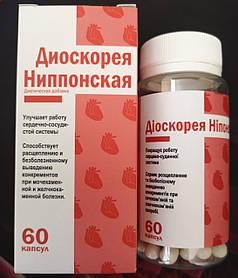 Диоскорея №60