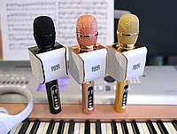 Микрофон караоке с колонками EverStar i8 беспроводной, детский. Лучший подарок ребенку на Новый Год