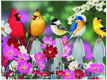 Картина за номерами 40х50 см DIY Птиці (FX 30351)