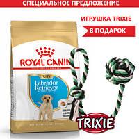Royal Canin LABRADOR RETRIEVER Puppy (роял канин лабрадор ретривер) корм для щенков 12 кг + ПОДАРОК !