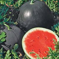 Ред Стар F1 насіння кавуна раннього (Nunhems)