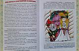 Книга «Дед мороз шагает по планете» Новогодняя энциклопедия, фото 4