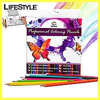 Разноцветные карандаши Vincis Secret 48 штук