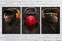 """Модульная картина на холсте из 3-х частей """"Стильные обезьяны"""""""