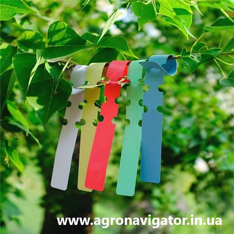Этикетки-петля для маркировки растений TYVEK  цветная 1,27х16 см, 1000 шт., фото 2