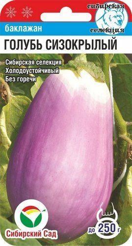 Сибірський Сад Баклажан Голуб Сизокрылый 20 шт.