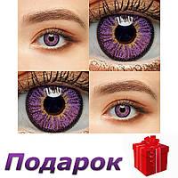 Цветные линзы 1 пара Линзы на Хэллоуин  Violet