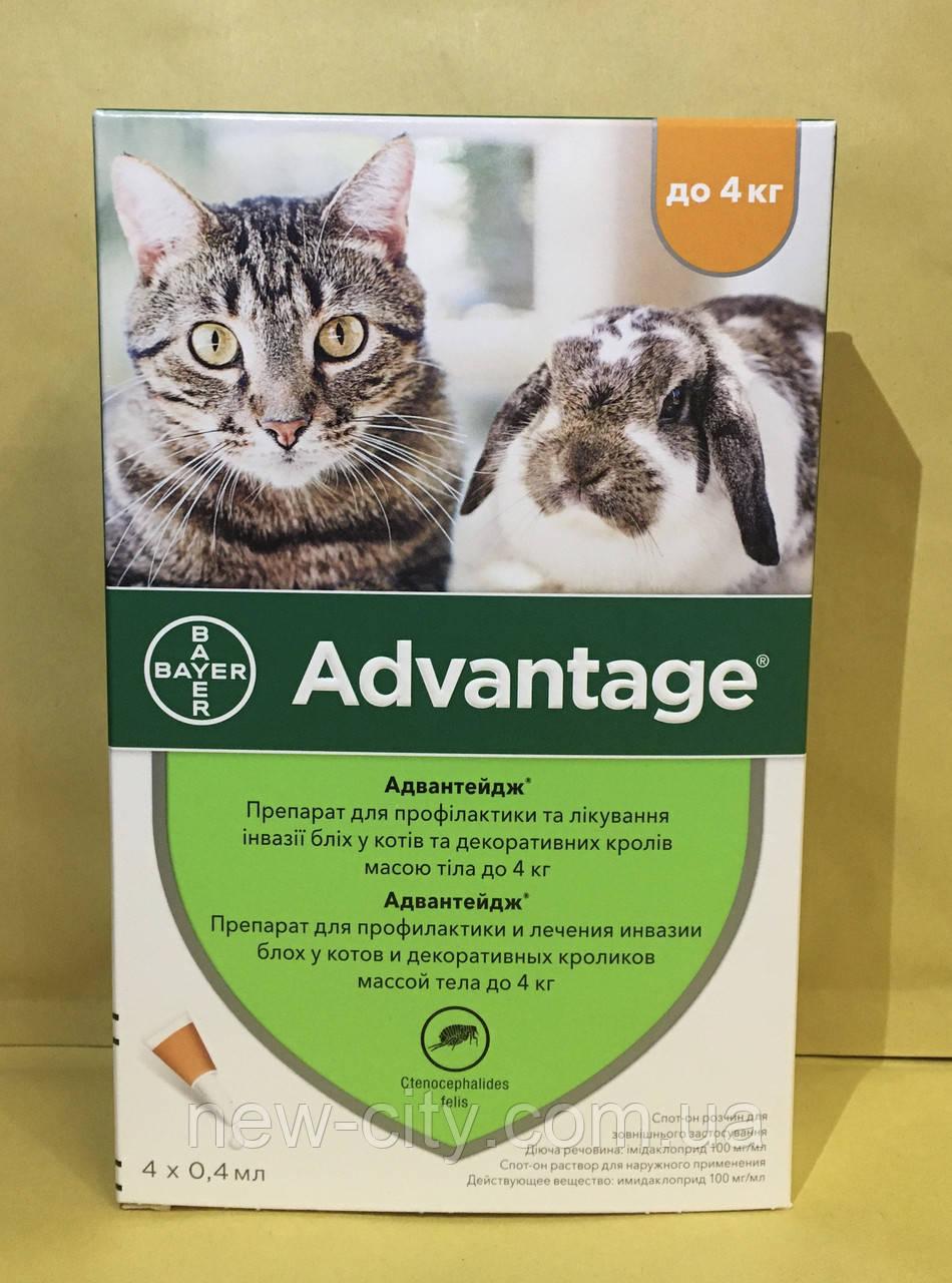 Bayer Advantage* 40 - капли Байер Адвантейдж от блох для кроликов, котят и кошек до 4 кг за 1 (пипетку)