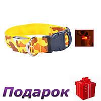 Светящийся светодиодный ошейник для собак TAILUP L Желтый, фото 1