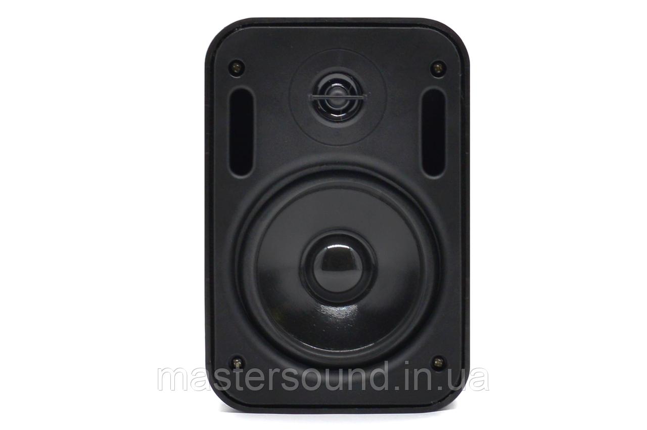 Настенная акустика Sky Sound HoReCa 2401B/TB