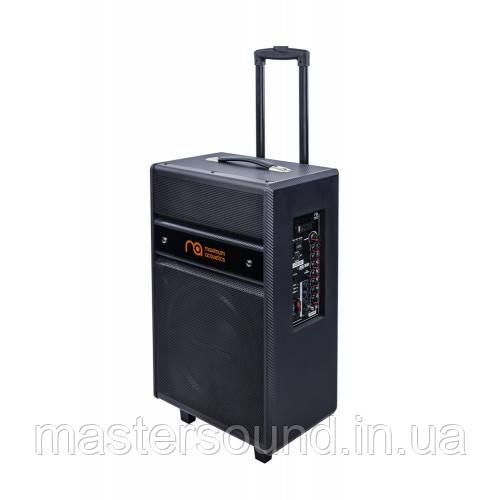Портативная акустическая система Maximum Acoustics MusicBAND100