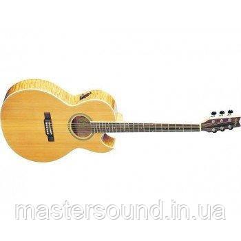 Электро-акустическая гитара Washburn EA20 SDL