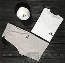 Чоловічий річний комплект кепка шорти і футболка Лакост (Lacoste)