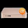 Караоке система Evolution Evobox Plus Gold, фото 6
