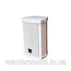 Настенная акустическая система Younasi Y-615