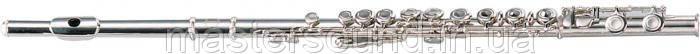 Флейта Maxtone TFC60N (TFC44N)