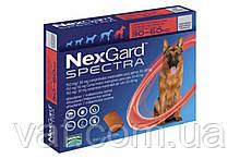 Таблетки от блох, клещей и глистов  для собак NexGard Spectra НексГард Спектра весом 30-60 кг