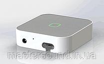 Multi-Room аудіо контролер Sky Sound WI-FI CASE AM-PRO (вбудований підсилювач)