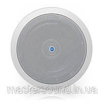 Потолочная акустика RCF PL40