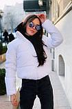 Куртки женское короткие, фото 7