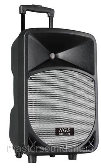 Портативная акустическая система NGS Premium BS-205FX 15