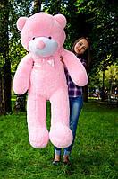 Плюшевий ведмідь мішка на подарунок