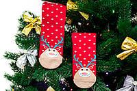 🎄 Красные новогодние носки с оленями и снегом 36-41 размер Золото, фото 1