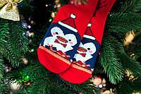 🎄 Красные новогодние носки с пингвинами 36-41 размер Золото, фото 1