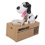 Собака поедающая монеты (копилка) My Dog Piggy Bank, бело-черная, фото 2