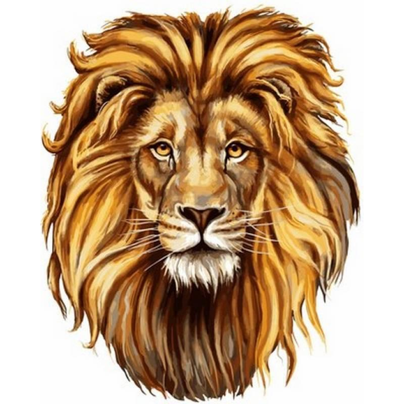 Картина рисование по номерам Babylon Царственный лев 40х50см VP1017 набор для росписи, краски, кисти, холст