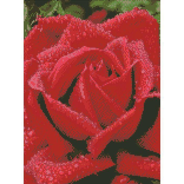 Алмазная мозаика Запашна троянда Идейка АМ6100 30х40см на подрамнике, квадратные стразы, полная зашивка. Набор