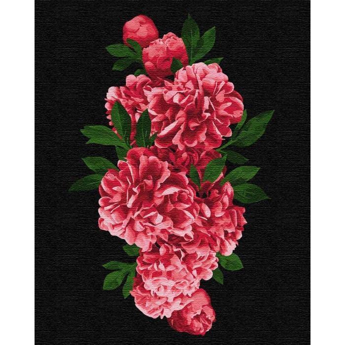 Картина рисование по номерам Пристрасні півонії, 40x50 см., Идейка набор для росписи, краски, кисти, холст