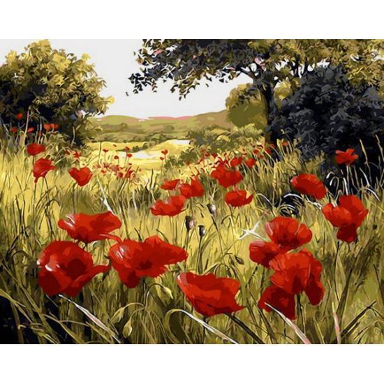 Картина рисование по номерам Babylon Красный цвет мака 50х65см QS1432 набор для росписи, краски, кисти, холст